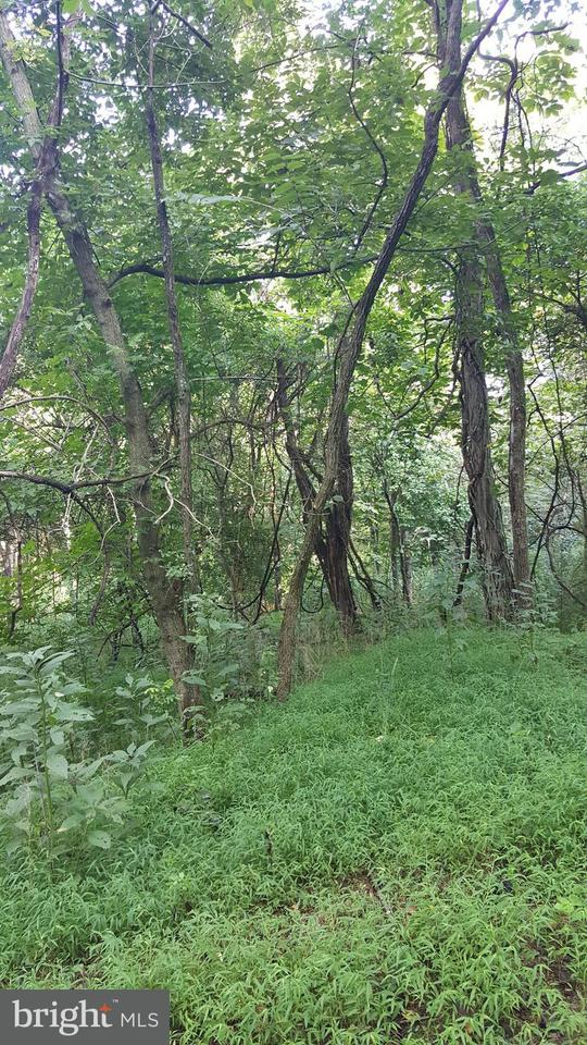 Land for Sale at Mountain River Way Lot 3 Way Levels, West Virginia 25431 United States