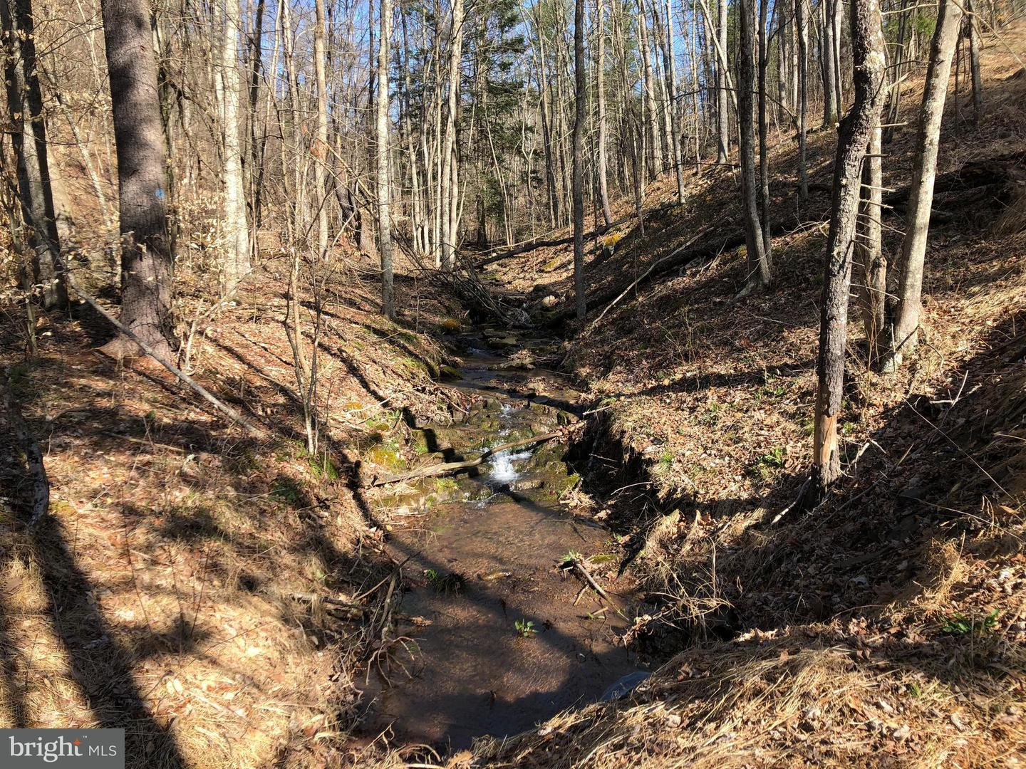 Land for Sale at Lot 11 Polecat Hollow Rd Hopewell, Pennsylvania 16650 United States