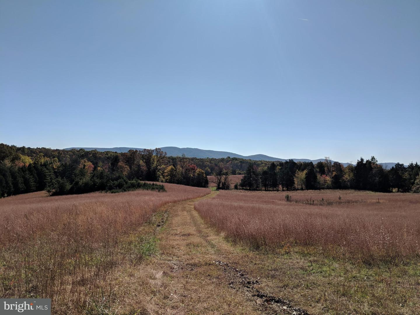 Land for Sale at Burnley Rd Barboursville, Virginia 22923 United States