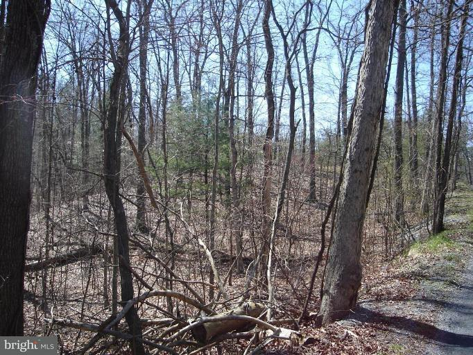 Additional photo for property listing at Boy Scout Rd  Hedgesville, West Virginia 25427 United States
