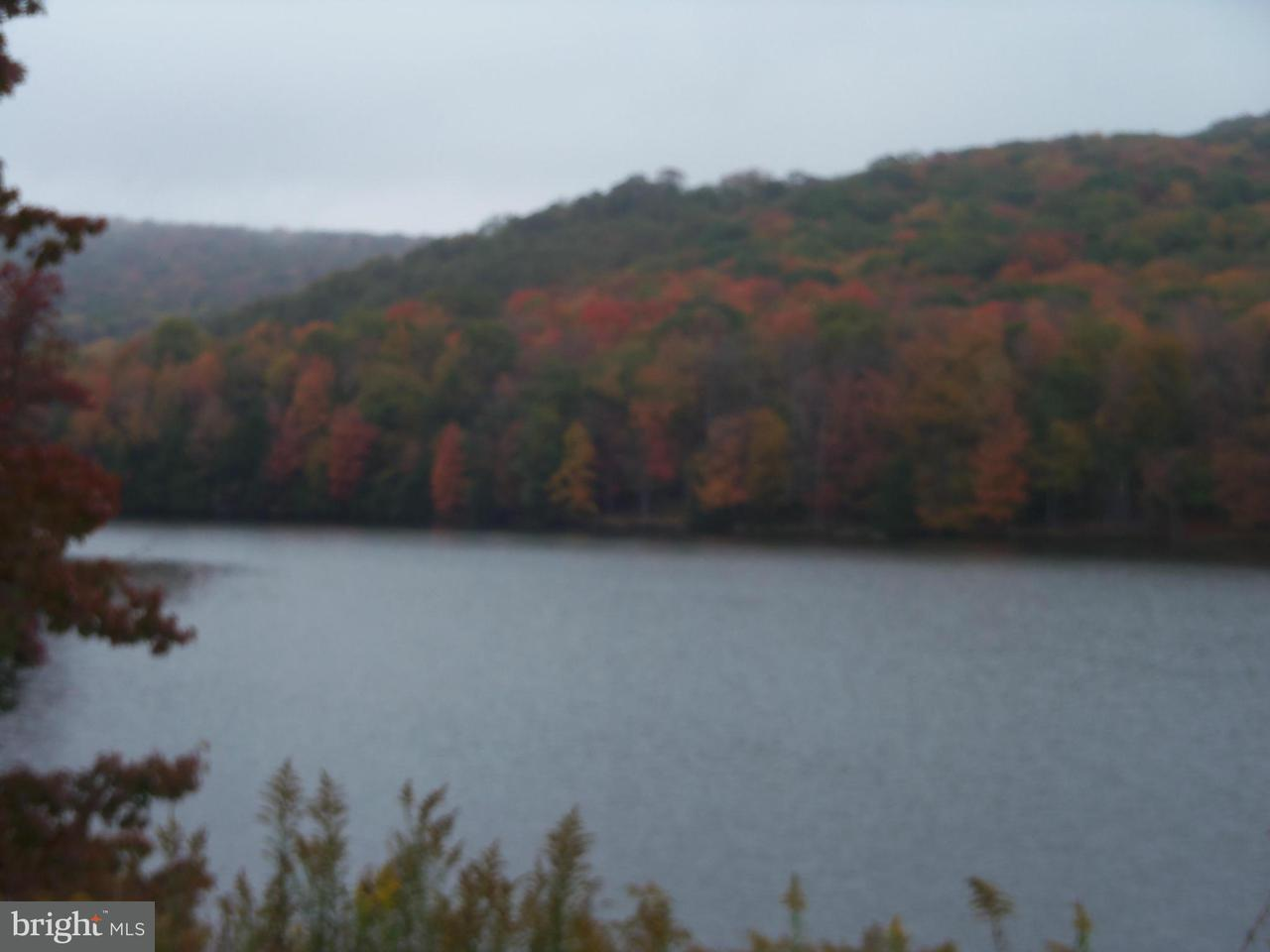 Additional photo for property listing at 3 E Alpine Dr  Terra Alta, West Virginia 26764 United States