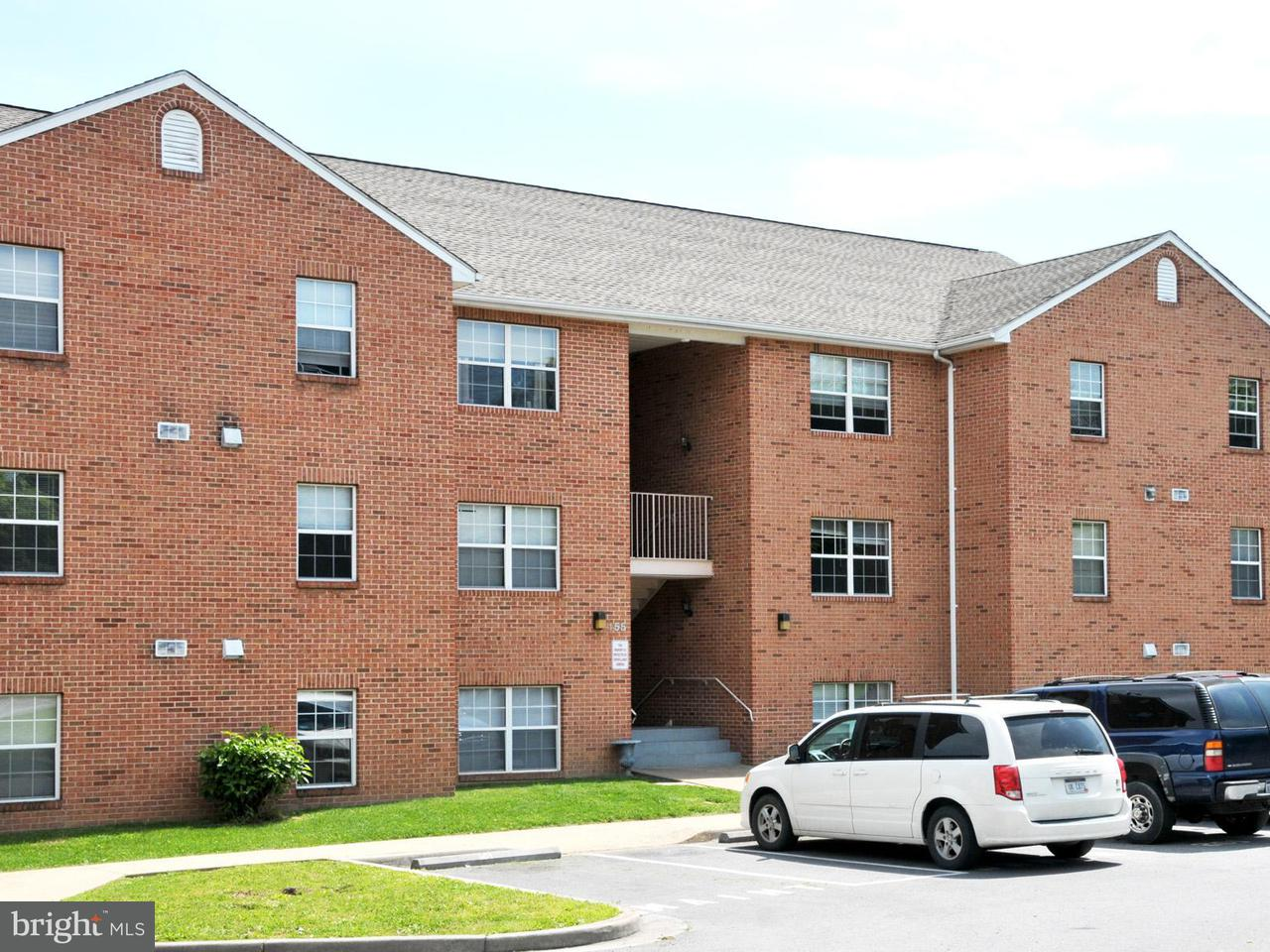 Other Residential for Rent at 145 Hensel Dr Shepherdstown, West Virginia 25443 United States