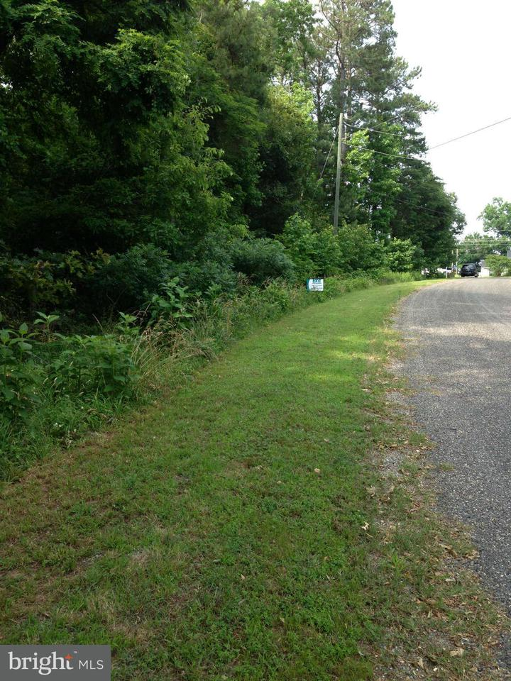 Land for Sale at Not On File Montross, Virginia 22520 United States