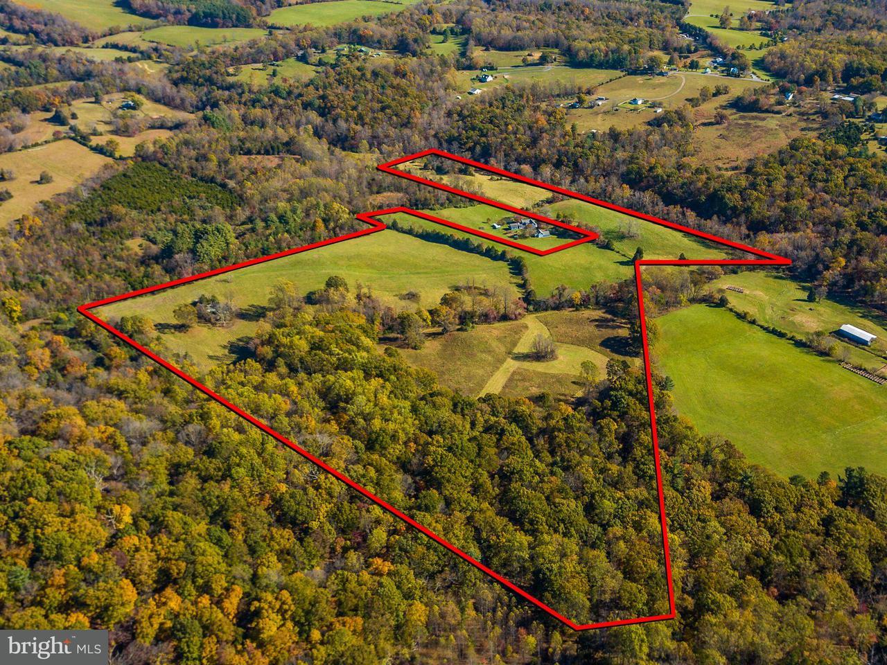 土地 為 出售 在 Gore Road Gore Road Castleton, 弗吉尼亞州 22716 美國