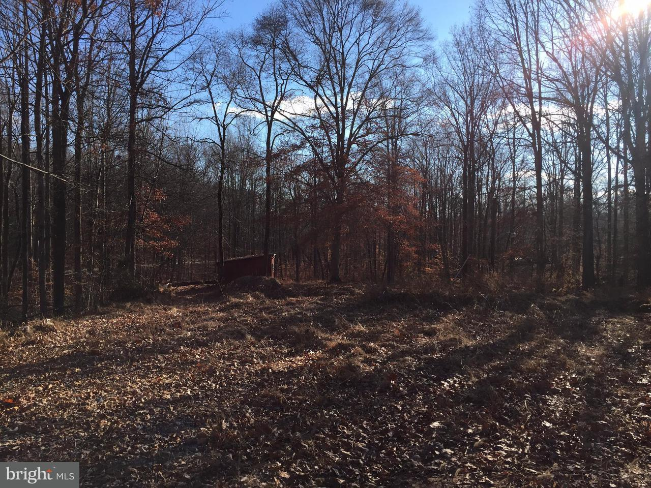 Land for Sale at 214 Elly Rd Aroda, Virginia 22709 United States