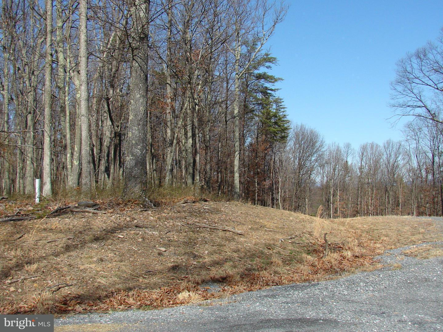 Land for Sale at Lot 23 Twin Lakes East Berkeley Springs, West Virginia 25411 United States