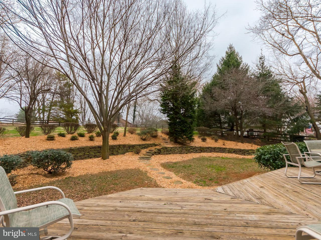 Additional photo for property listing at 3111 Hunt Road 3111 Hunt Road Oakton, Virginia 22124 Vereinigte Staaten