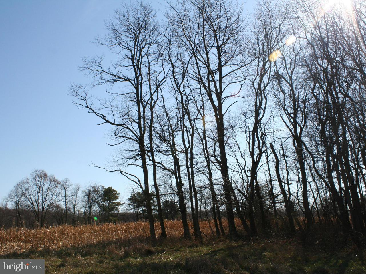 Land for Sale at Colonel Fetters Road Clearville, Pennsylvania 15535 United States
