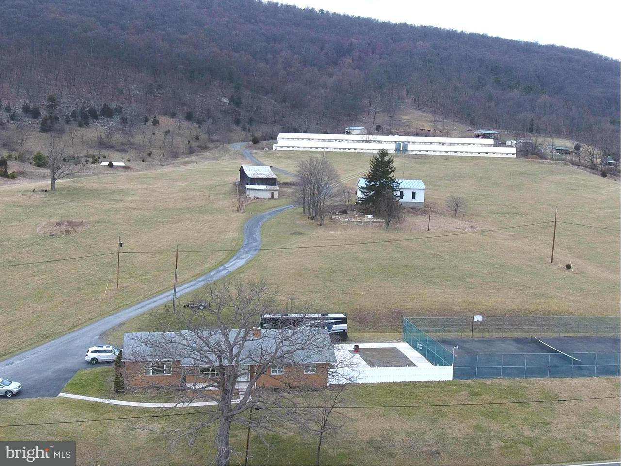 Farm for Sale at 34 Bosley Dr Maysville, West Virginia 26833 United States