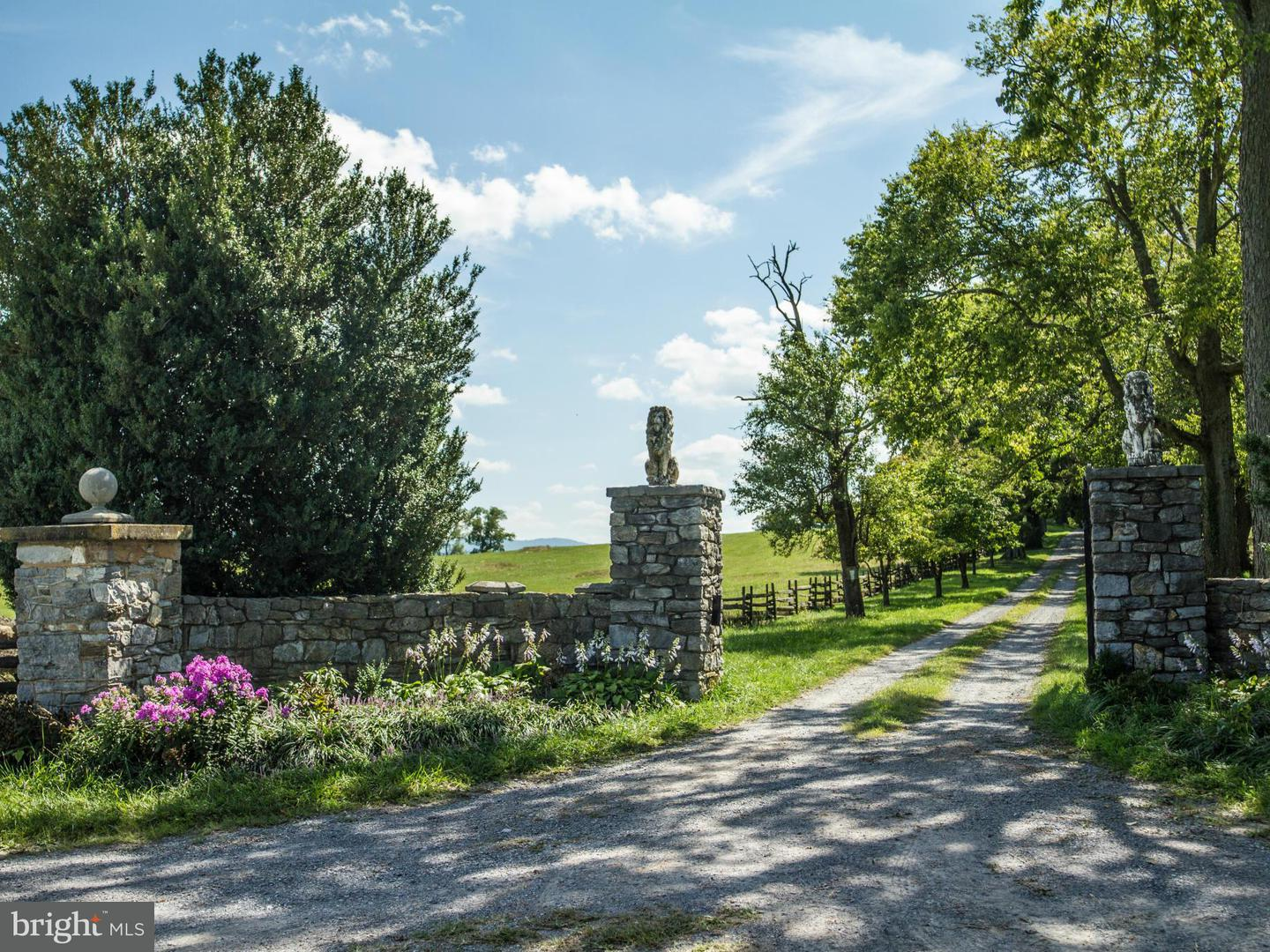 Farm for Sale at 466 Montana Hall Ln S White Post, Virginia 22663 United States