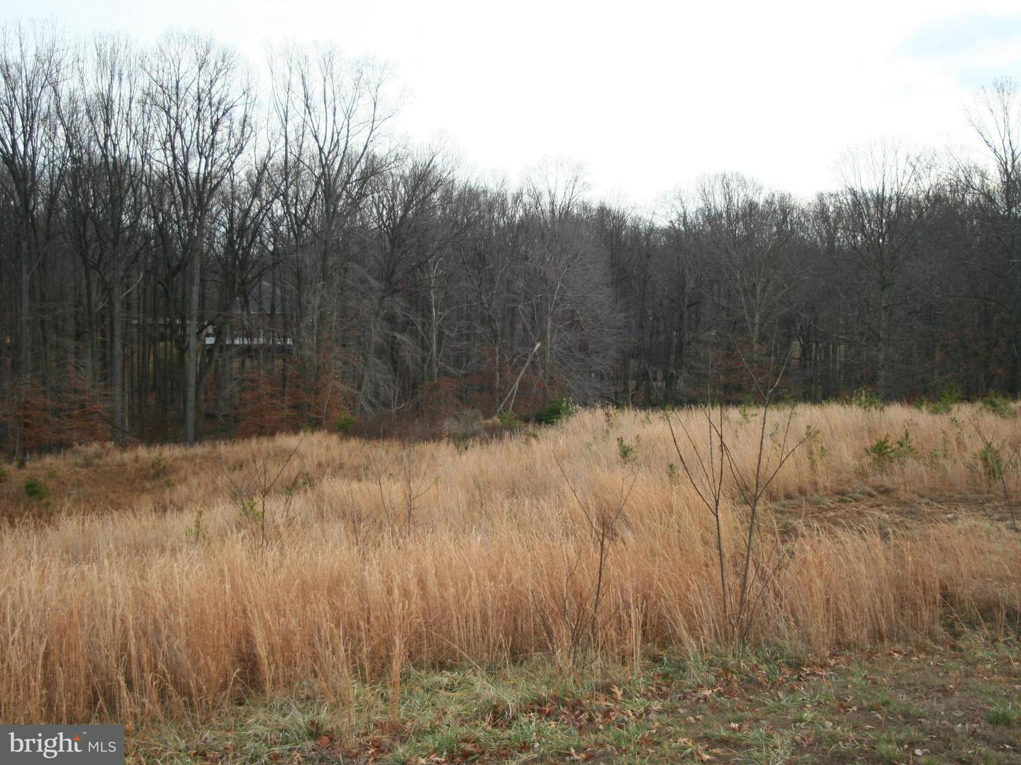 Additional photo for property listing at 11319 Fox Creek Farm Way  Great Falls, Virginia 22066 United States