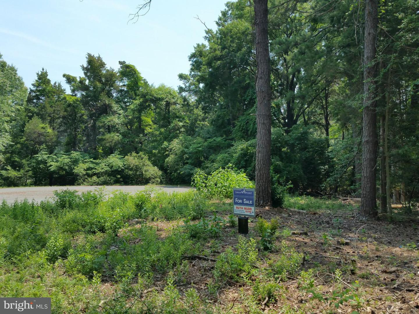 Land for Sale at 11955 Limestone Ct Issue, Maryland 20645 United States
