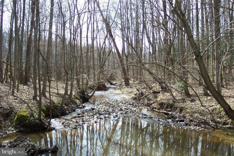 Additional photo for property listing at Chapmans Landing Rd  Indian Head, Maryland 20640 United States
