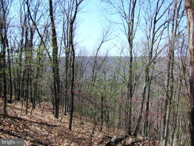Land for Sale at 6 Cardinal Ridge Est Romney, West Virginia 26757 United States