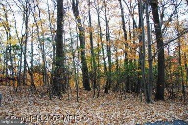 Land for Sale at 2005 Ridge Rd Haymarket, Virginia 20169 United States