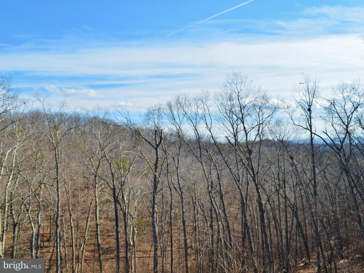 Additional photo for property listing at Lot 24 Gafia Lodge Rd  Middletown, Virginia 22645 United States