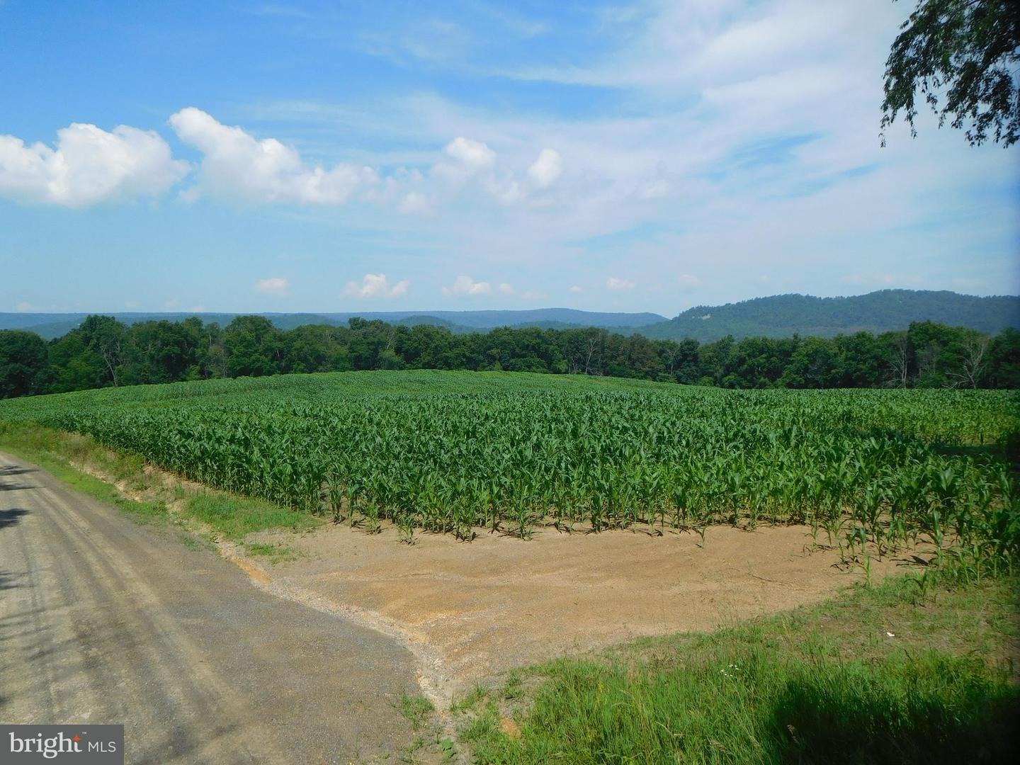 Land for Sale at 65 Acres Lowry Rd Mc Connellsburg, Pennsylvania 17233 United States