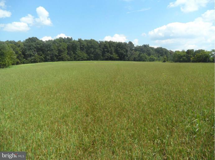 Land for Sale at 10008 Keysville Rd Emmitsburg, Maryland 21727 United States