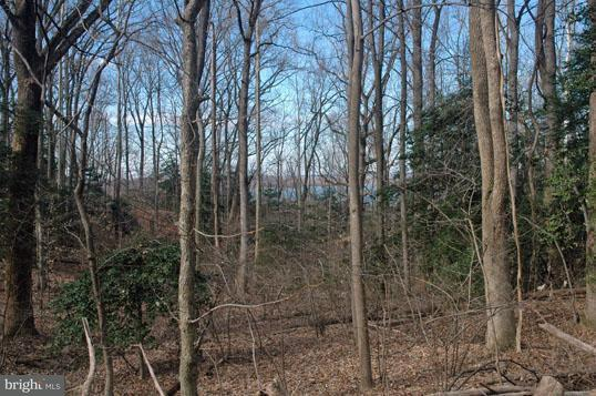 Additional photo for property listing at Ridge Rd  Accokeek, Maryland 20607 United States