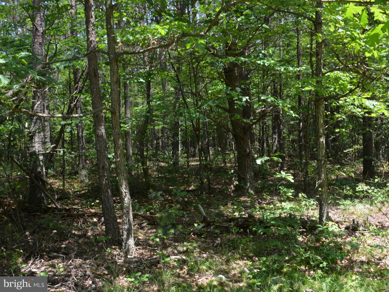 Land for Sale at 4099 Dogwood Lane Clearville, Pennsylvania 15535 United States