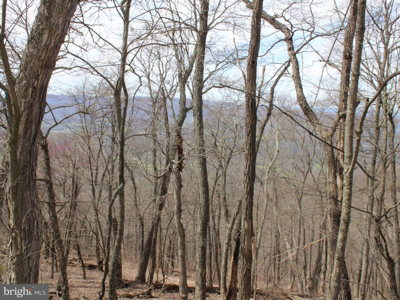 Land for Sale at Lot 1 Sec 2 High Knob Rd Old Fields, West Virginia 26845 United States