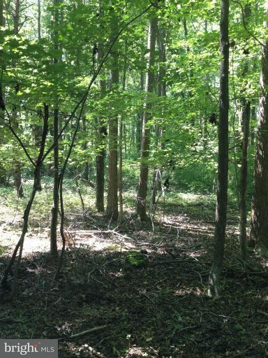 Land for Sale at Log Inn Road Annapolis, Maryland 21409 United States