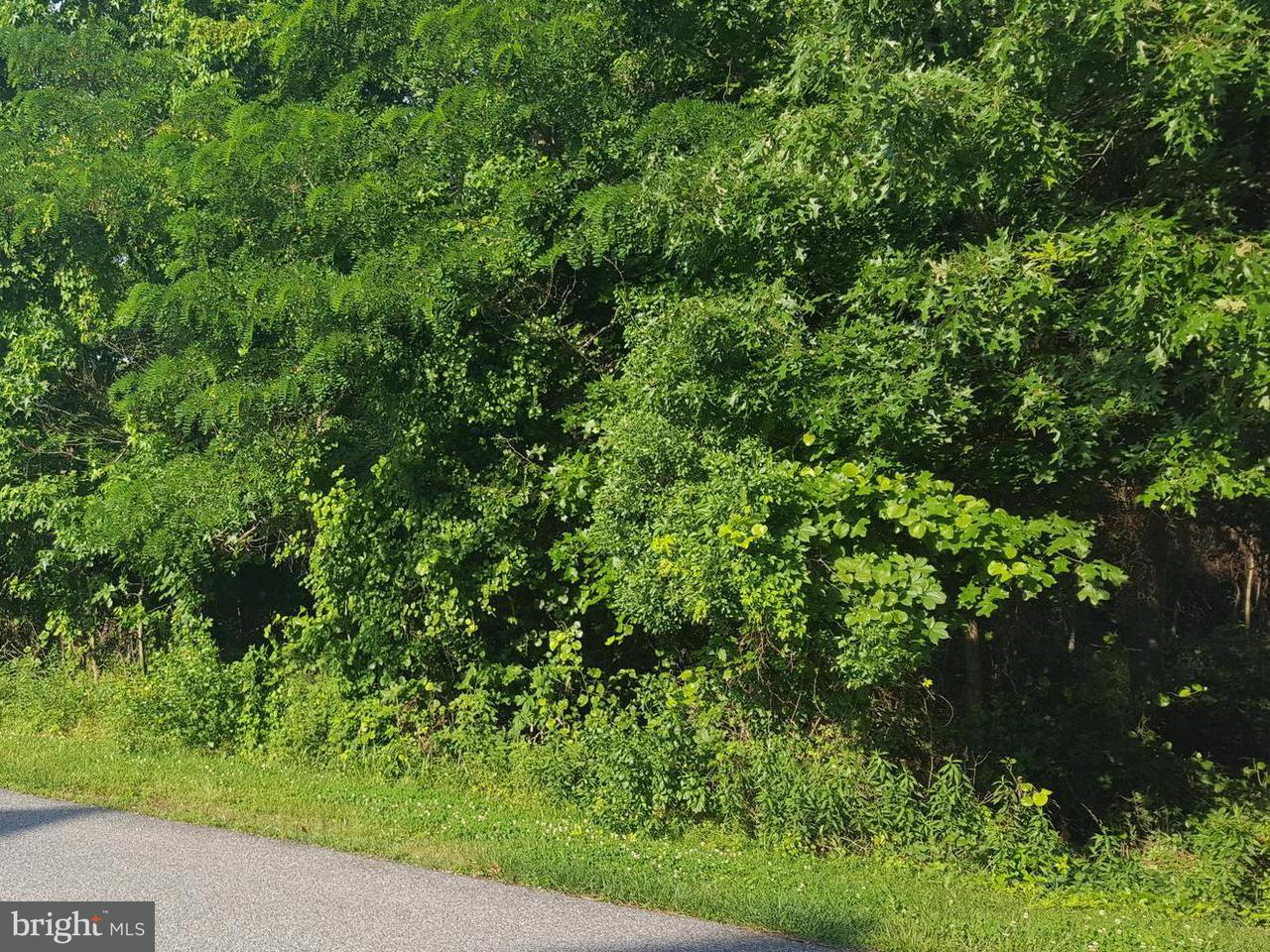 Land for Sale at 11265 Keokee Ct Issue, Maryland 20645 United States