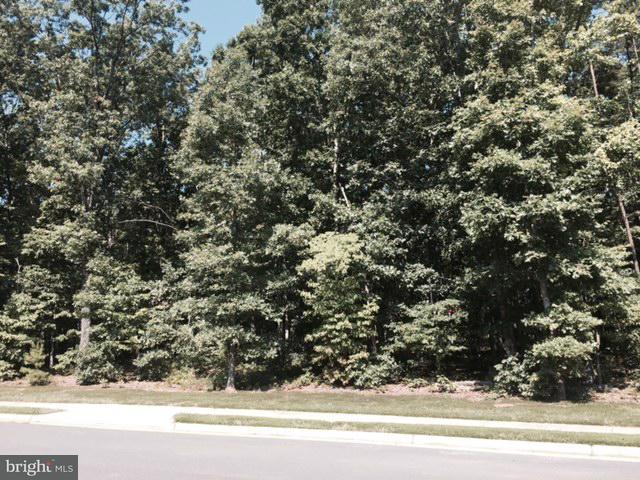 Land for Sale at 11204 Westmont Dr Spotsylvania, Virginia 22551 United States