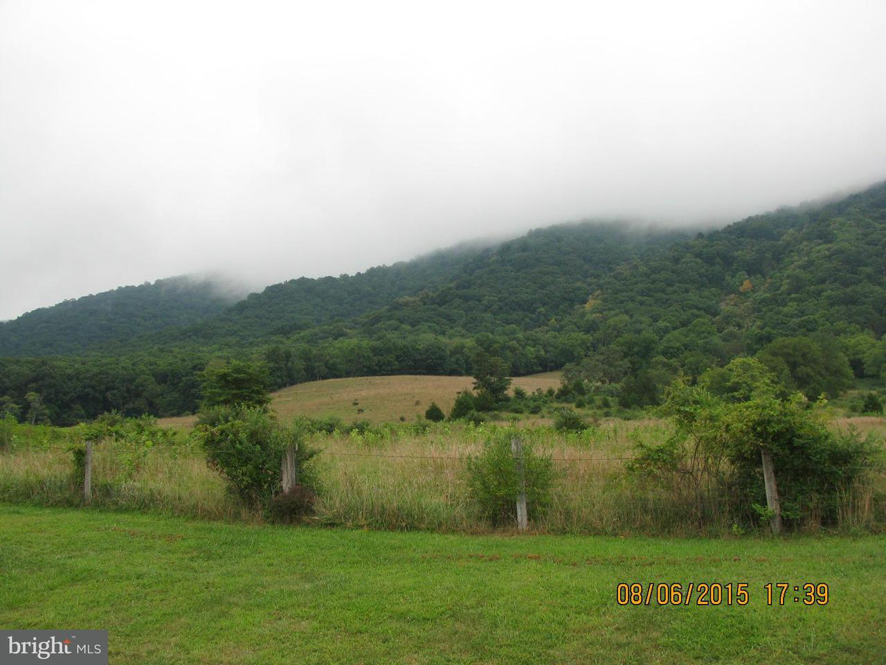 Land for Sale at Route 220 Moorefield, West Virginia 26836 United States