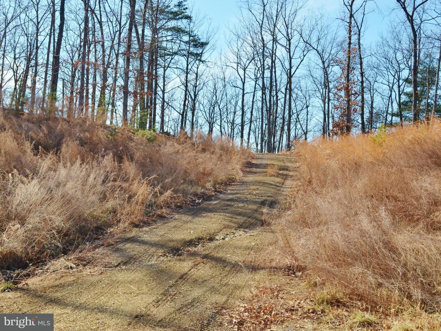 Additional photo for property listing at Lot 31 Comforter Ln  Middletown, Virginia 22645 United States