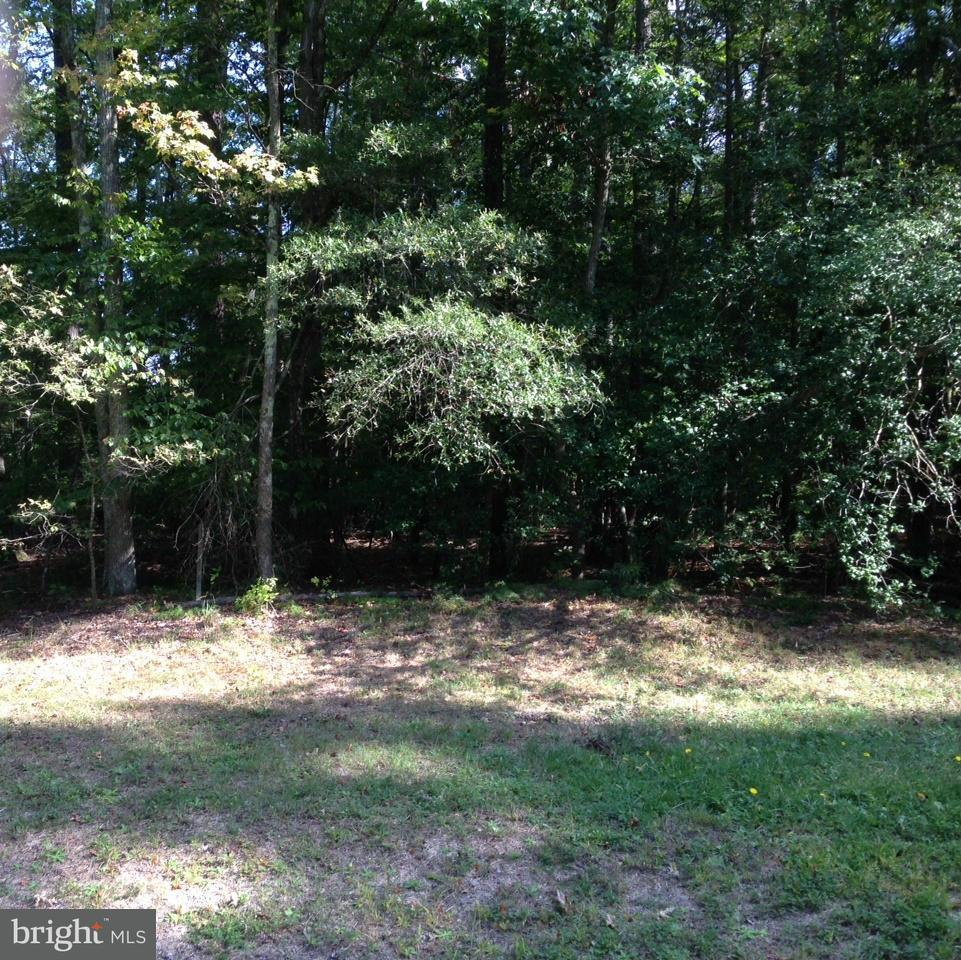 Land for Sale at 0 Placid Point Dr Colonial Beach, Virginia 22443 United States