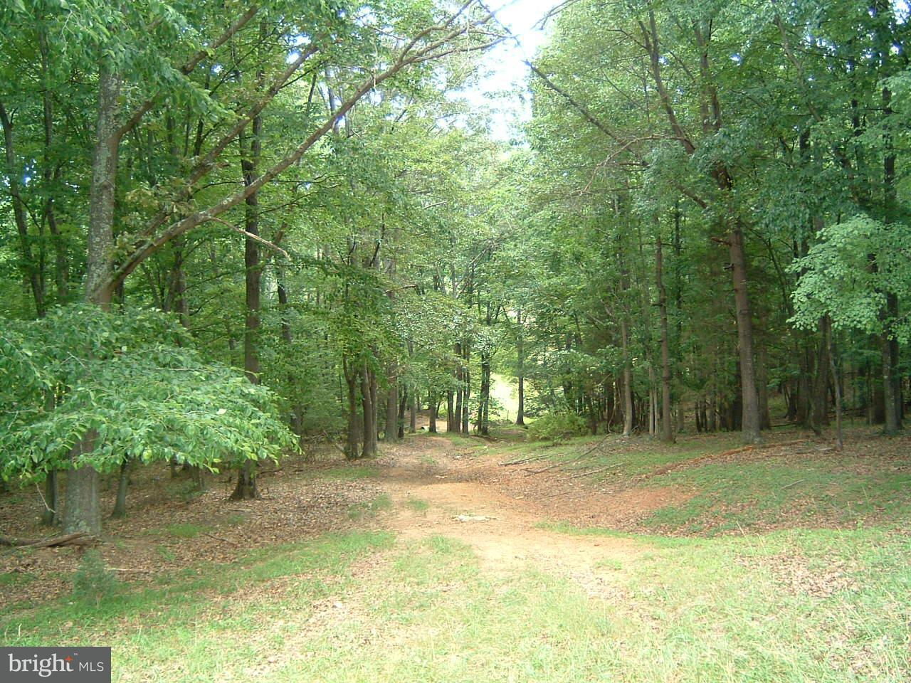 Additional photo for property listing at 1453 Seminole Trl  Madison, Virginia 22727 United States