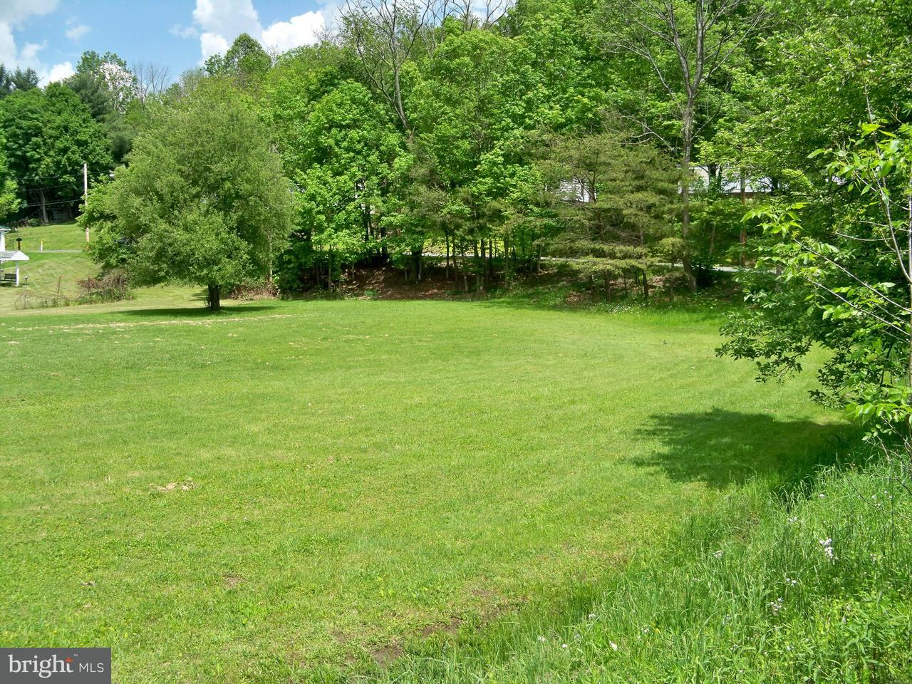 Land for Sale at Quinn St Midland, Maryland 21542 United States