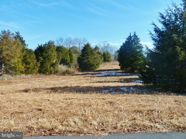 Land for Sale at Lot 41 Comforter Ln Middletown, Virginia 22645 United States