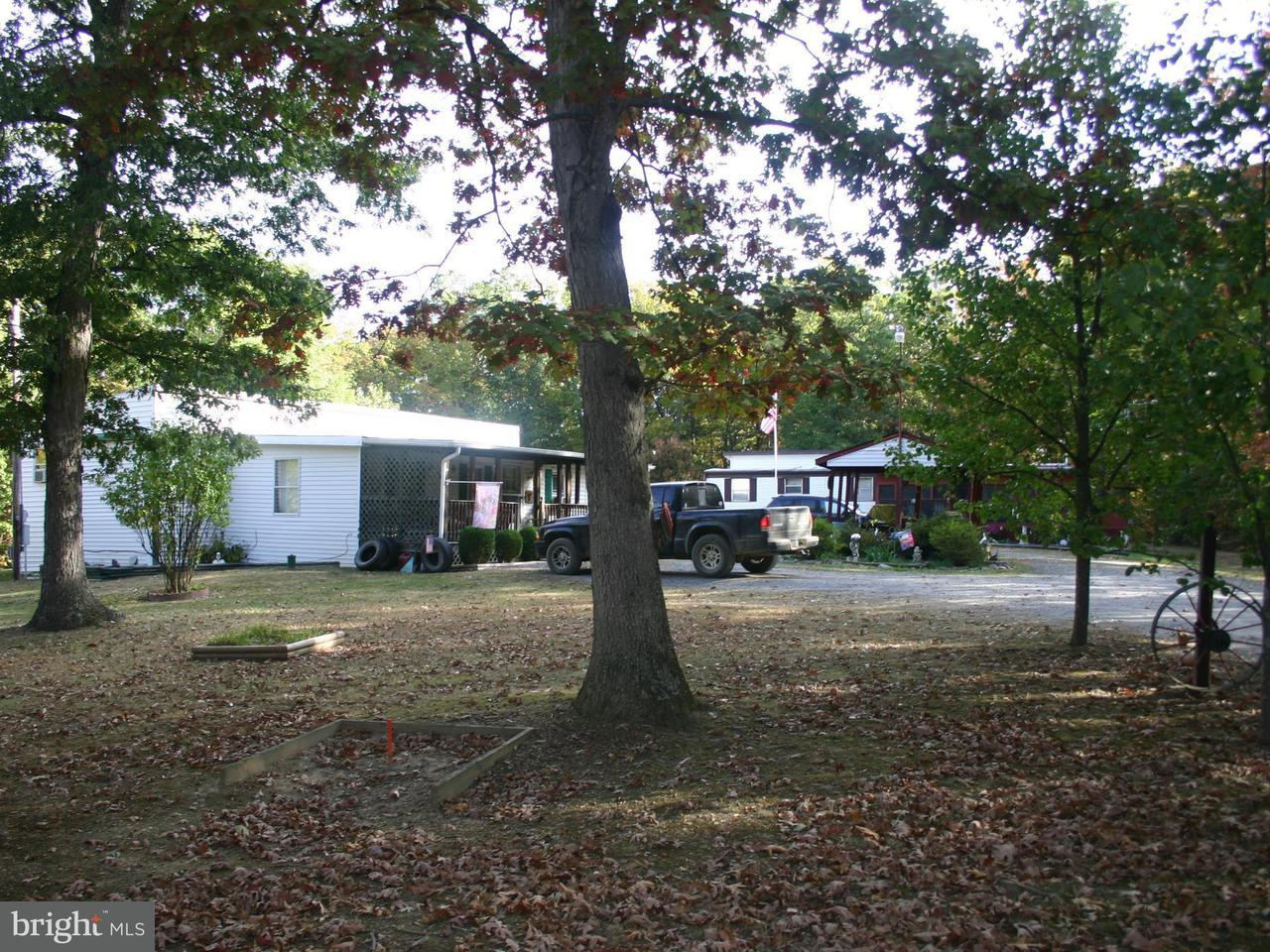 Single Family for Sale at 75 Foxy Ln. Delray, West Virginia 26714 United States