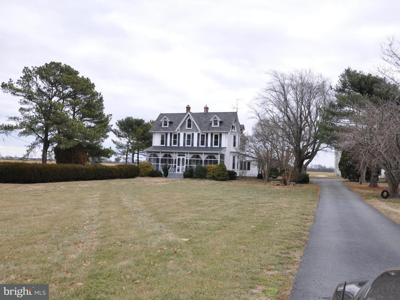 农场 为 销售 在 11571 Galena Road E 11571 Galena Road E Massey, 马里兰州 21650 美国