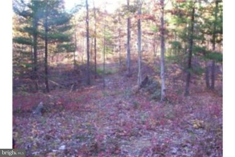 Land for Sale at White Oak Ln New Market, Virginia 22844 United States
