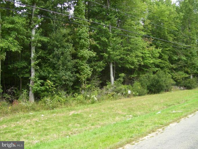 Land for Sale at 217 Brownsville Rd Centreville, Maryland 21617 United States