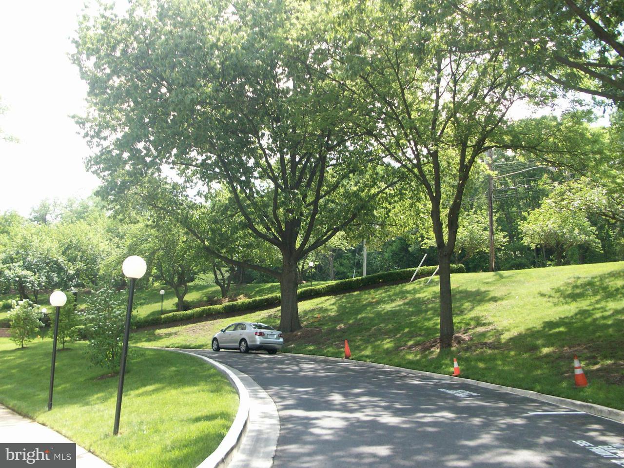 Condominium for Rent at 5500 Holmes Run Pkwy #517 Alexandria, Virginia 22304 United States