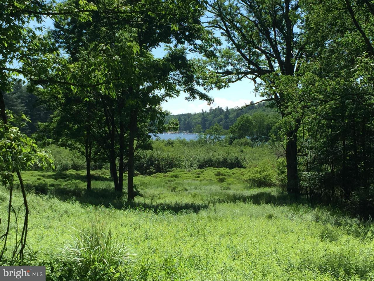 Land for Sale at 1 Paradise Point Rd Oakland, Maryland 21550 United States