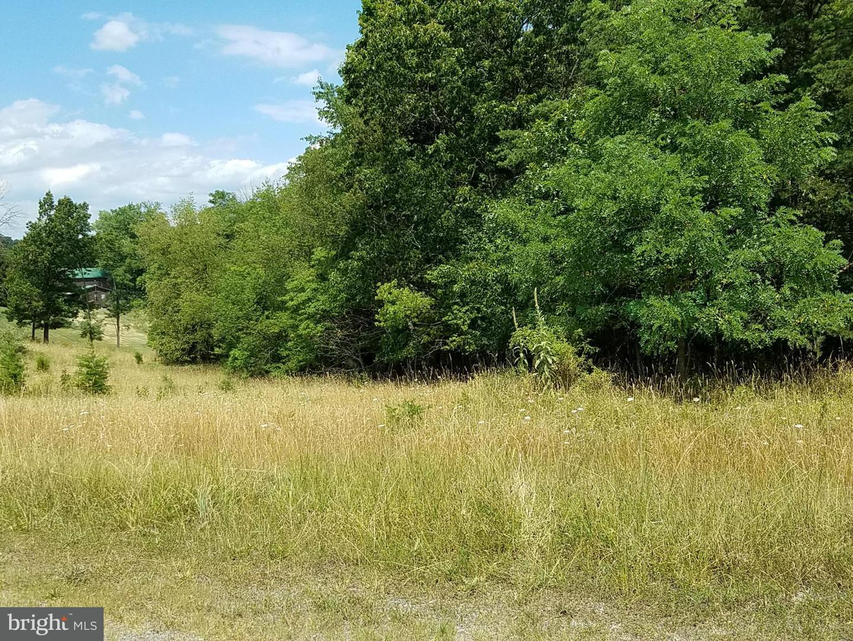 Land for Sale at 12 Husk Trl Berkeley Springs, West Virginia 25411 United States