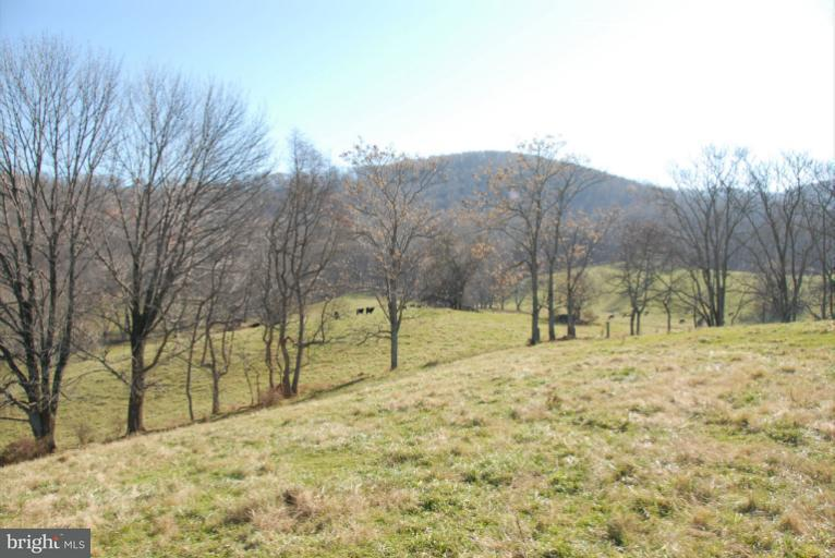 Additional photo for property listing at 3585 Carrington Rd  Delaplane, Virginia 20144 United States