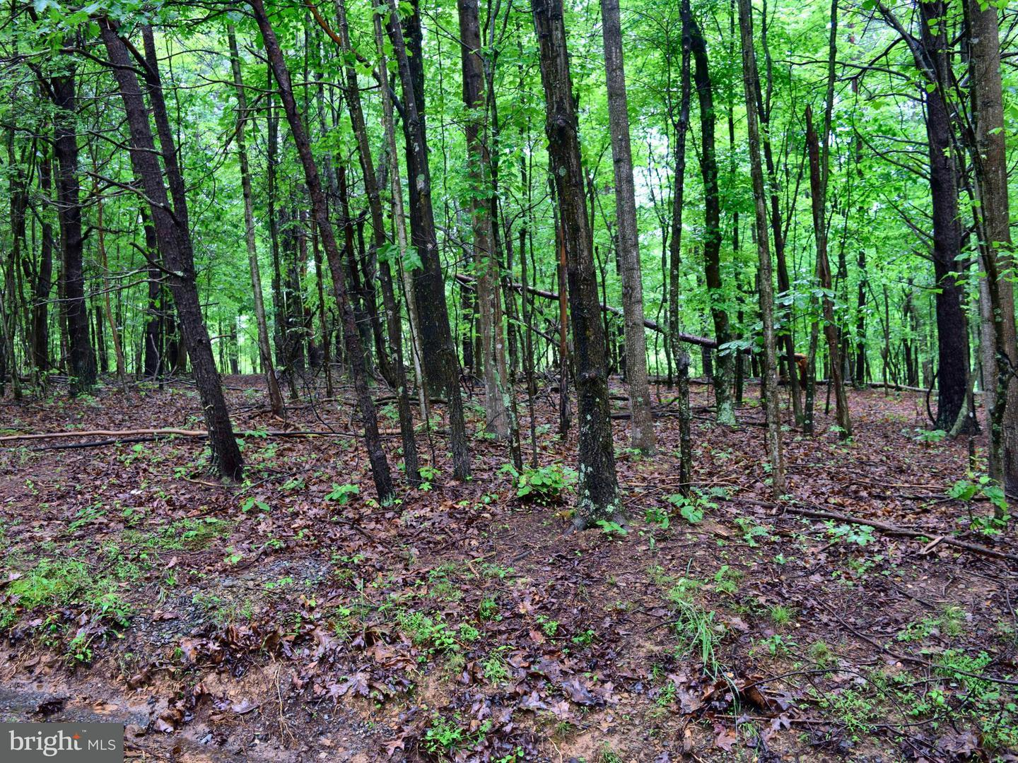 Land for Sale at Derby Dr High View, West Virginia 26808 United States