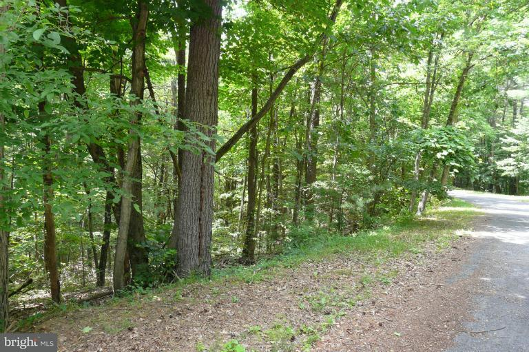 Land for Sale at Straton Court Basye, Virginia 22810 United States