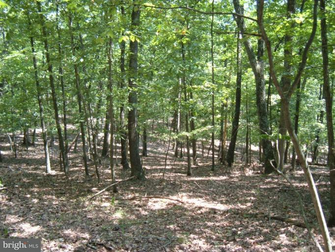Land for Sale at Windover Dr Fort Ashby, West Virginia 26719 United States