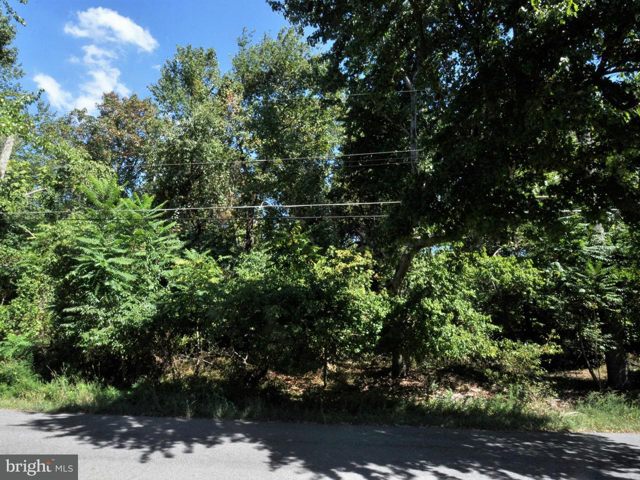 Additional photo for property listing at 6100 Wesson Dr  Suitland, Maryland 20746 United States