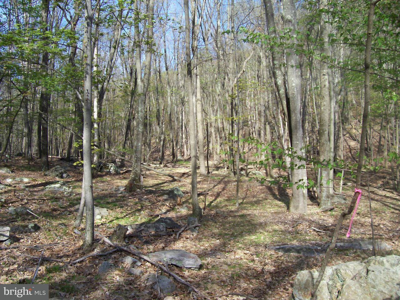 Land for Sale at 3 Lost River Glen Wardensville, West Virginia 26851 United States