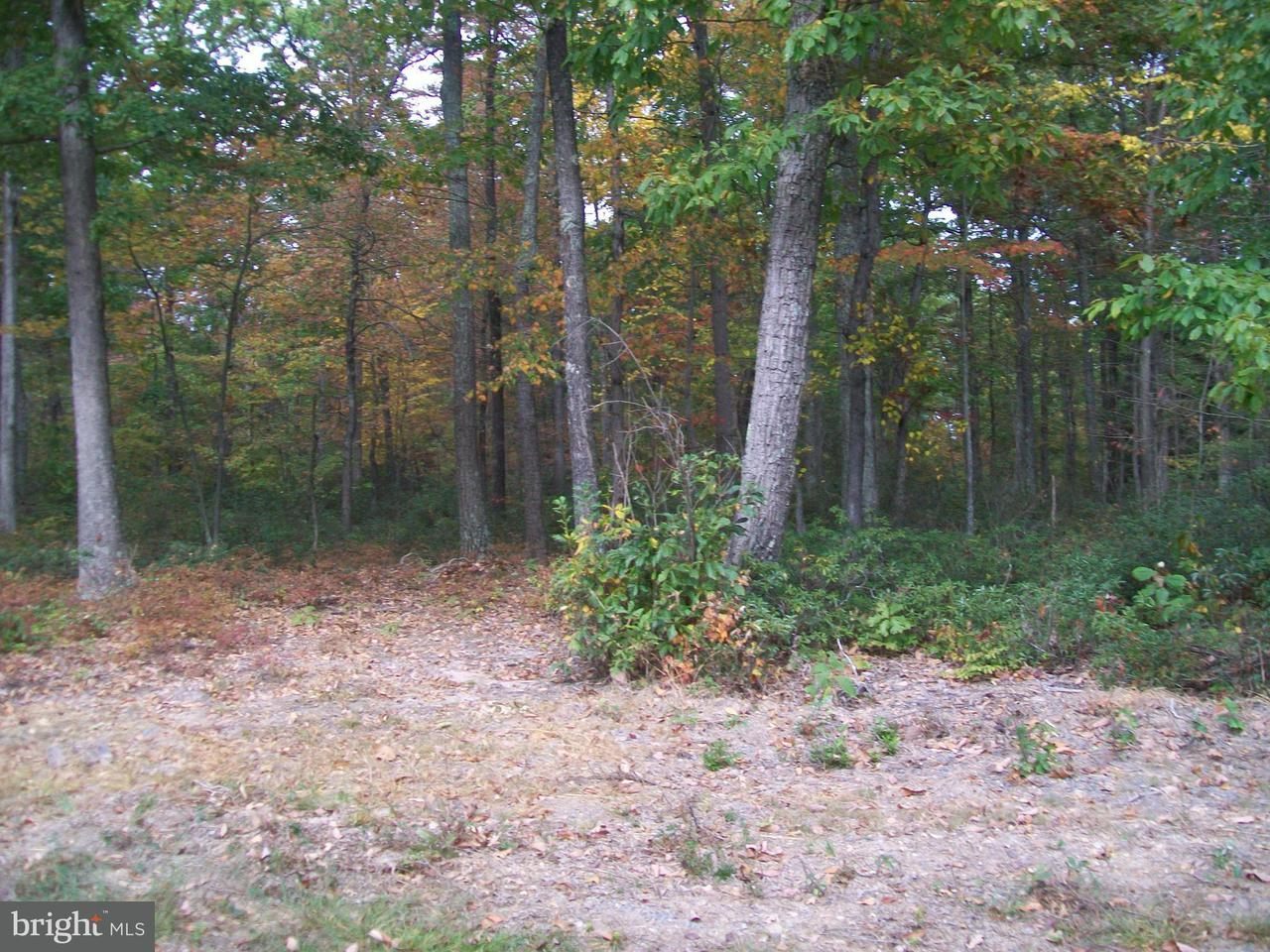 Land for Sale at Waterberry Dr Bloomery, West Virginia 26817 United States