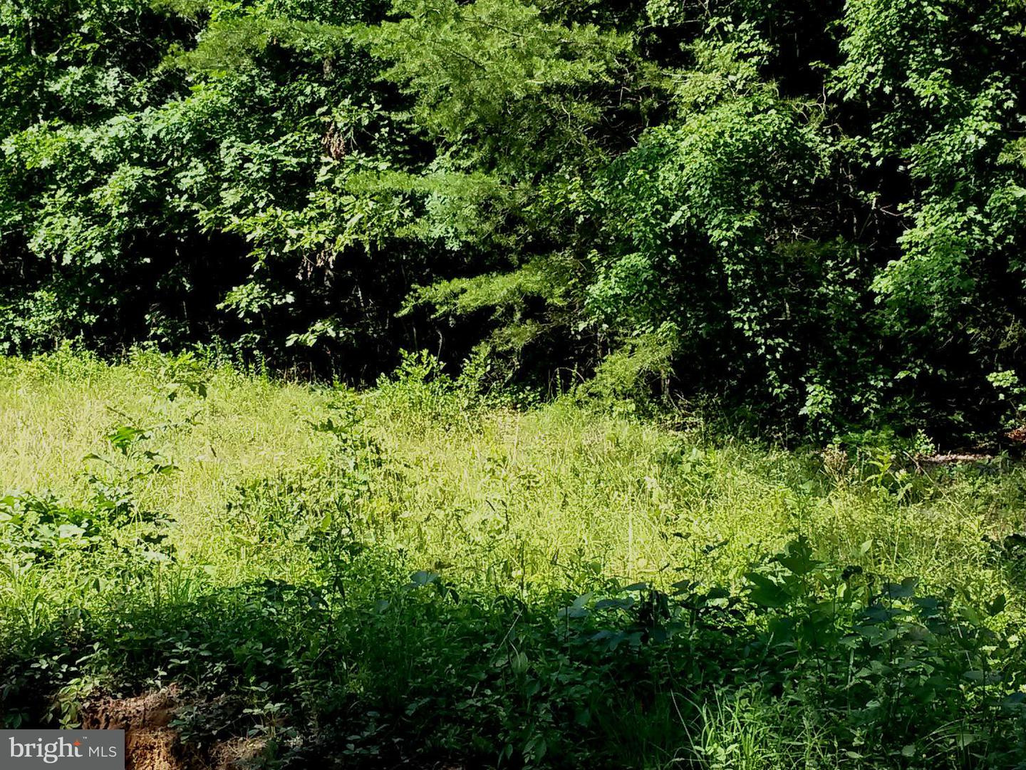 Land for Sale at 8216 Shirley Rd Unionville, Virginia 22567 United States