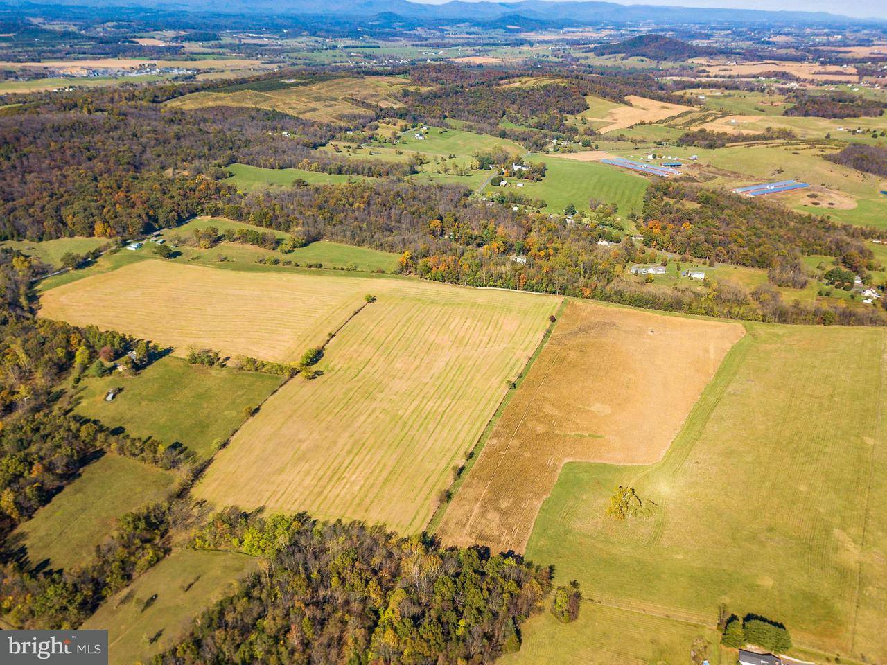Additional photo for property listing at Ridge Road Ridge Road New Market, バージニア 22844 アメリカ合衆国